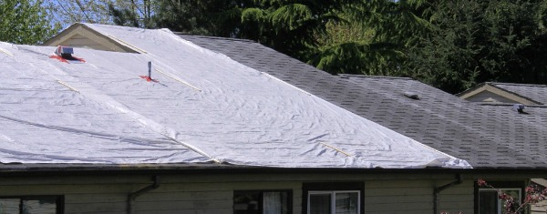 New Roof Leaking roofing faq: 8 common roofing questions | american dream
