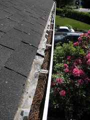 Roof Replacement Shingle Granules Roof Decay