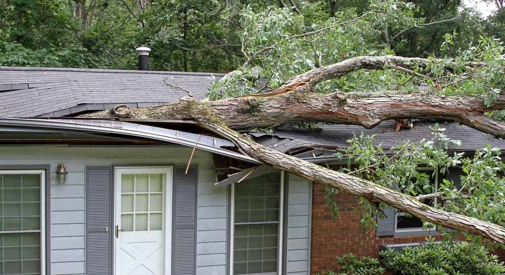 Roof Wind Damage What It Is And How To Spot It